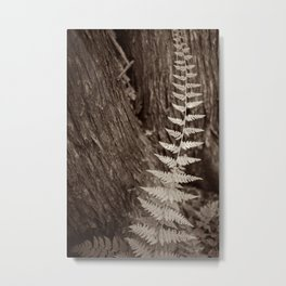 Single Copper Fern Metal Print