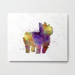 Yorkshire Terrier in watercolor Metal Print