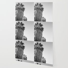 Palms Palm Springs Wallpaper