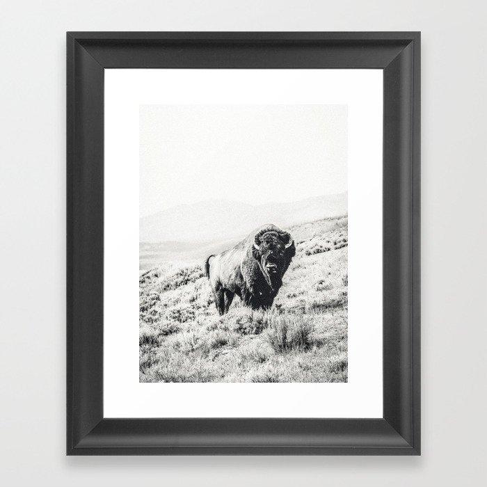 Nomad Buffalo Gerahmter Kunstdruck