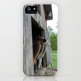 Seeing Triple iPhone Case