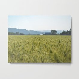 Country Fields Metal Print
