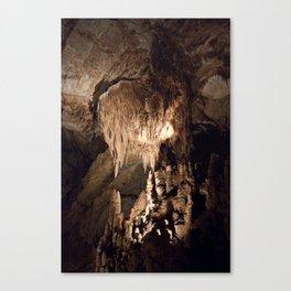 Underneath Tennessee Canvas Print