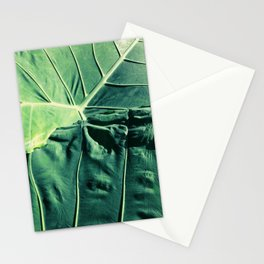 The Pursuit of Nature 01 Stationery Cards