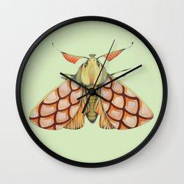 Moth n. 3 (ORIGINAL SOLD). Wall Clock