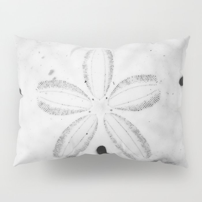 Sand Dollar Pillow Sham