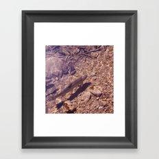 Underwater 04 Framed Art Print