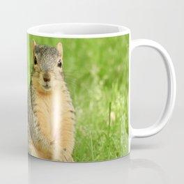 Well, hello #squirrel #wildlife Coffee Mug