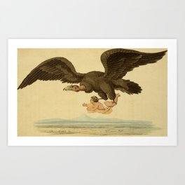 Vintage Print - Arcana or The Museum of Natural History (1811) - Condor Vulture Art Print