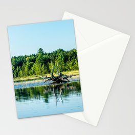 Driftwood Reflection Stationery Cards