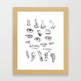 Features Framed Art Print
