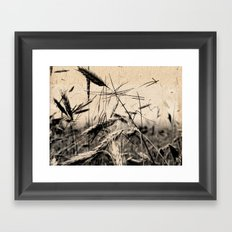 DRESSED GRAIN Framed Art Print