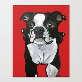 Bobo the Boston terrier Canvas Print