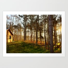 Enchanting Morning Art Print