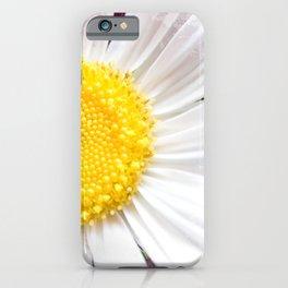 Daisy Flower Close-Up #1 #art #society6 iPhone Case