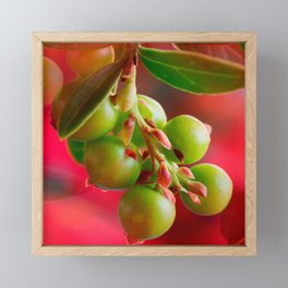 Green Berries Red Background #society6 #decor #buyart Framed Mini Art Print
