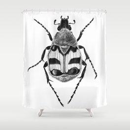 Beetle 02 Shower Curtain