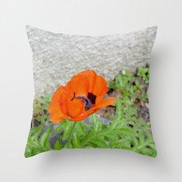 Poppy in the garden Throw Pillow