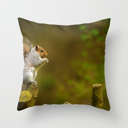 Cute Squirrel (Color) Throw Pillow