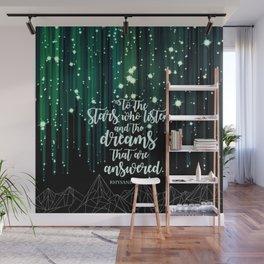 ACOMAF - Starfall Wall Mural