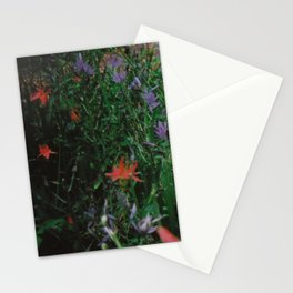 Summer #2 Stationery Cards