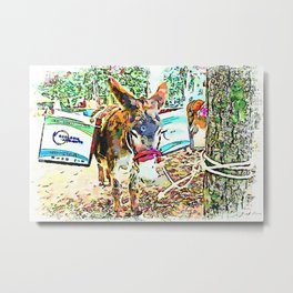 Donkey with boxes tied to the tree Metal Print