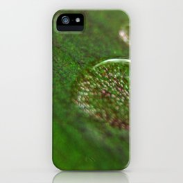 Nature's Magnifying Glass iPhone Case