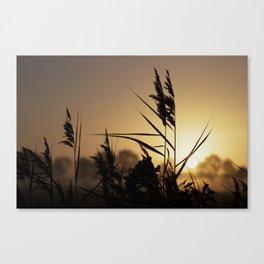 Impressions in autumn Canvas Print