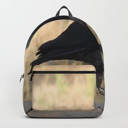 Side View Of A Wild Jackdaw Backpack