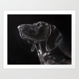 German Shorthaired Pointer Profile Art Print