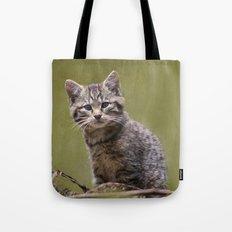 Scottish Wildcat Kitten Tote Bag