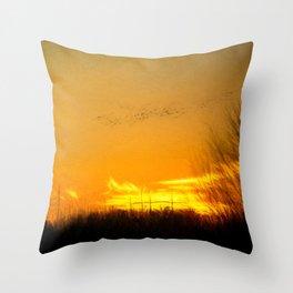 January Sunet - Lehigh Valley (Impressionist Version) Throw Pillow