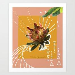 Protea Cynaroides Art Print
