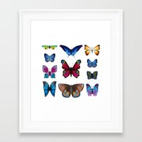 butterflies Framed Art Prints featuring Butterflies by Katerina Izotova
