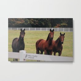 Three Musketeers Metal Print