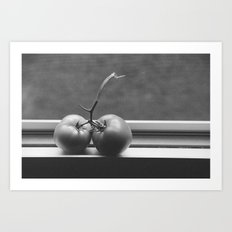 double toms Art Print