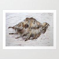 seashell Art Prints featuring Seashell by Lyubov Fonareva
