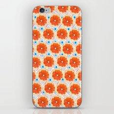 Citrus/Geo iPhone & iPod Skin