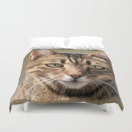 Portrait Of A Cute Tabby Cat With Direct Eye Contact Duvet Cover