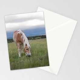 Blonde Beauty Stationery Cards