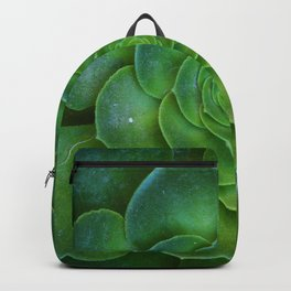 Green Beauty Backpack