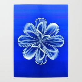 White Bloom on Blue Poster