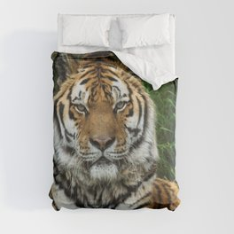 Majestic Fixed Tiger Stare Comforters