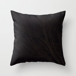 Into the Darkness of Winter Throw Pillow