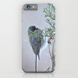 Reverie (Dark-eyed Junco) iPhone Case