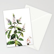 watercolor peppermint Stationery Cards