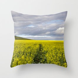Way Throw Pillow