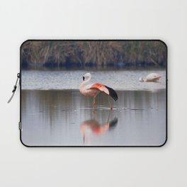 Chilean Flamingo (Phoenicopterus chilensis) Laptop Sleeve