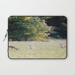 Whitetail Bucks Laptop Sleeve