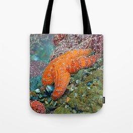 Summer Starfish Tote Bag